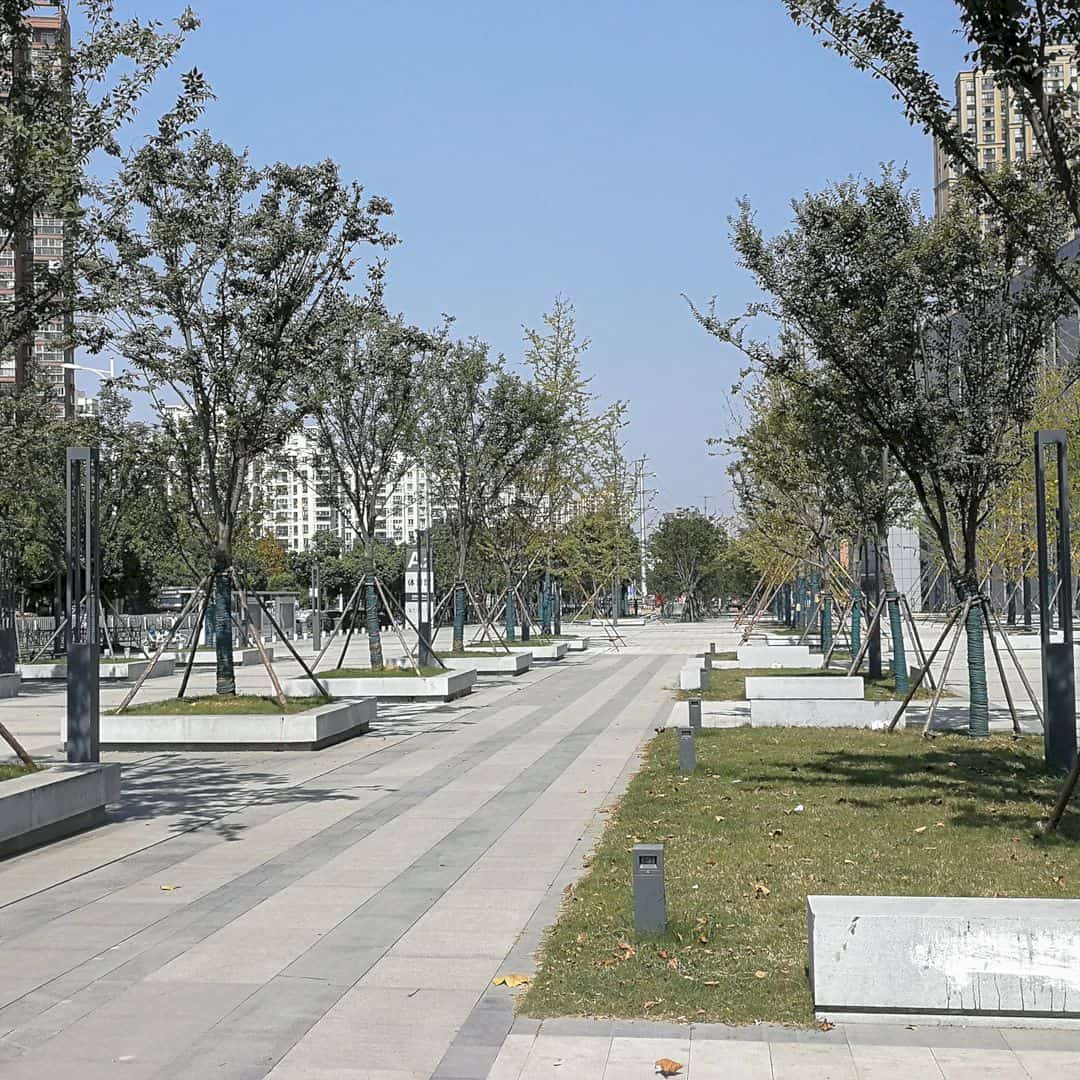 Shade Of The Municipal Square Citizen Square By Li Junfeng 1