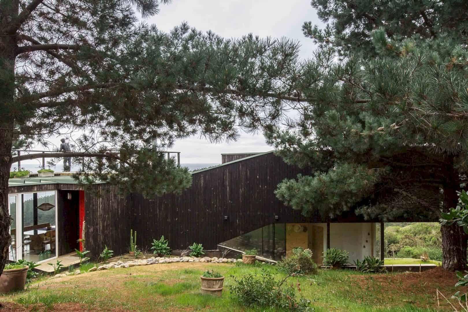 Curaumilla House 23
